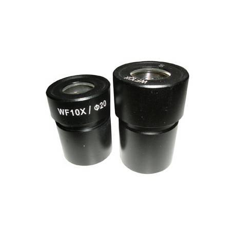 Coppia oculari 10x con reticolo 0,1 mm per microscopio steroscopico